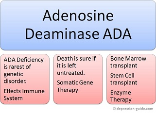 adenosine deaminase ada deficiency