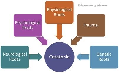 catatonia - relation with asperger syndrome, Skeleton